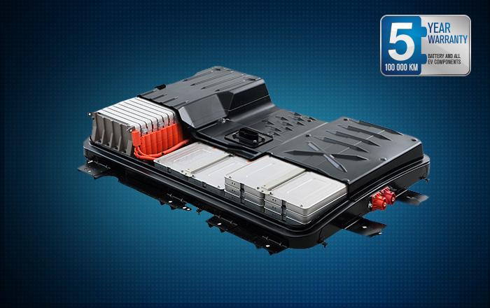 Garanzia Batterie Nissan LEAF